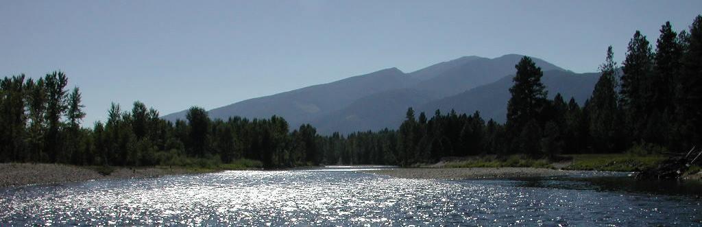 Bitterroot River MT